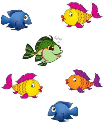 school of fishs
